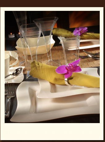 Upscale Disposable Tableware | Disposable Dinnerware | Plastic Tableware